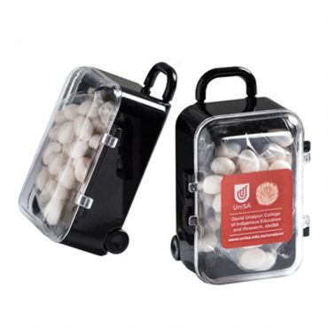 Acrylic Luggage Case...